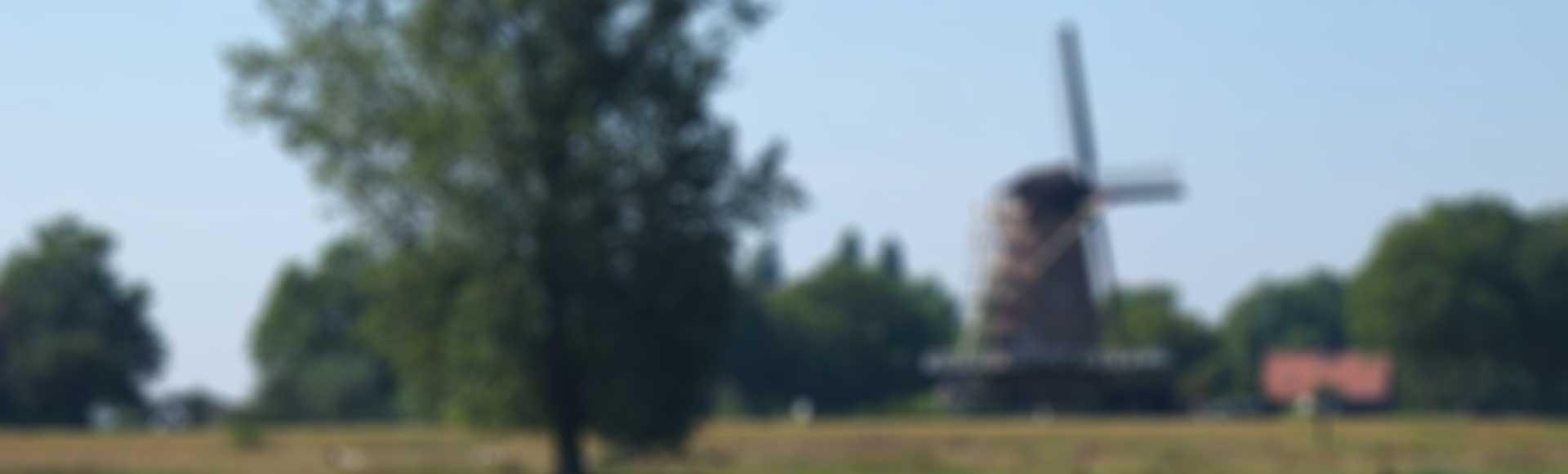 Welkom bij Stichting Dagbesteding Maaspark.